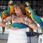 Soins magnétisme perroquet